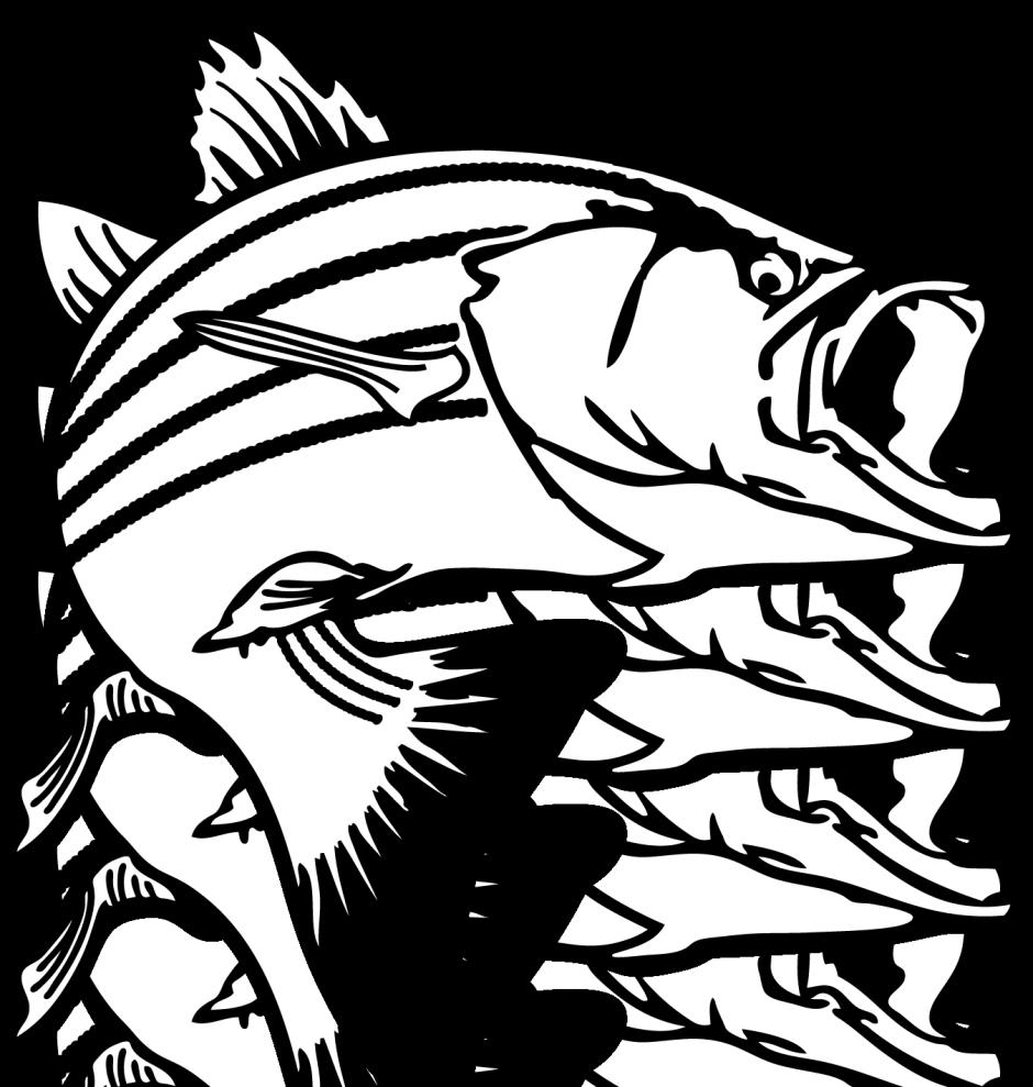 Salmon clipart 2