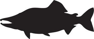 Salmon silhouette clipart 4