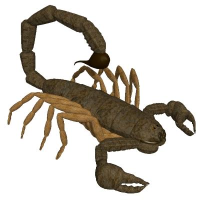 Scorpion clip art free 2
