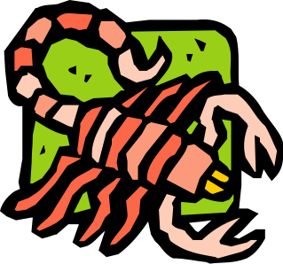 Scorpion free to use clip art 2