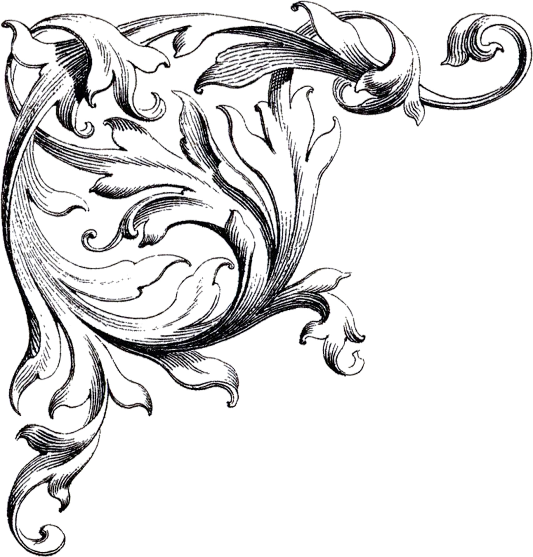 Scrollwork victorian scroll clip art free clipart images