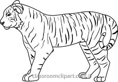 Tiger  black and white free black and white animals outline clipart clip art pictures