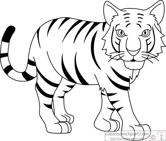 Tiger  black and white tiger black and white clipart