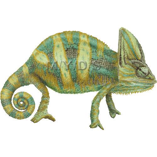 Veiled chameleon clipart graphics free clip art