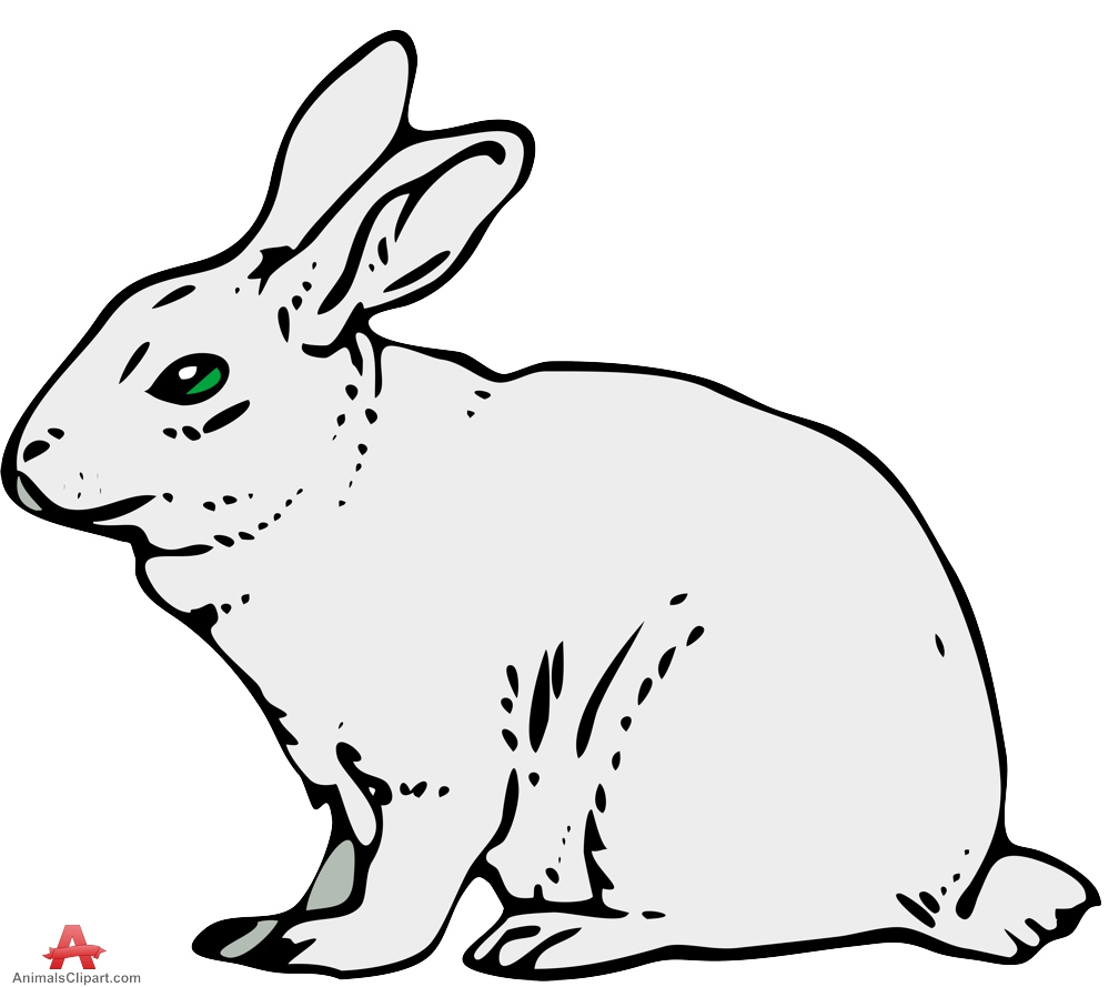 Bunny  black and white bunny black and white rabbit clipart 3