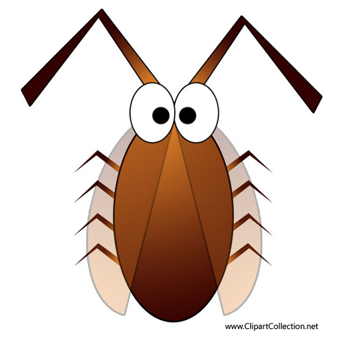 Cockroach clip art free clipart images 4