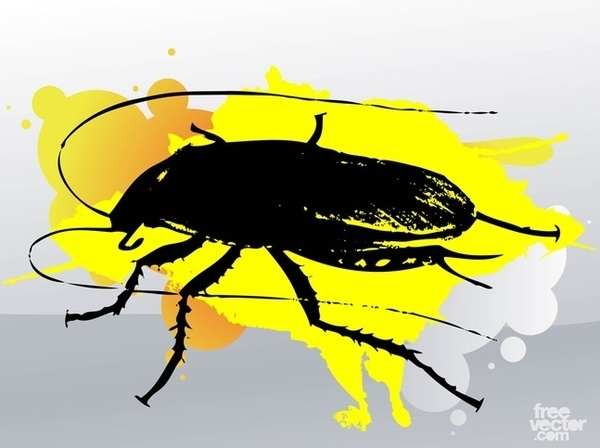Cockroach clipart free vector graphics freevectors 3