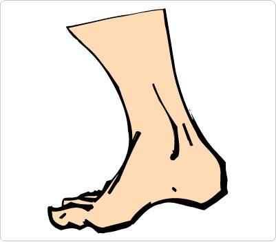 Foot animated walking feet clip art image