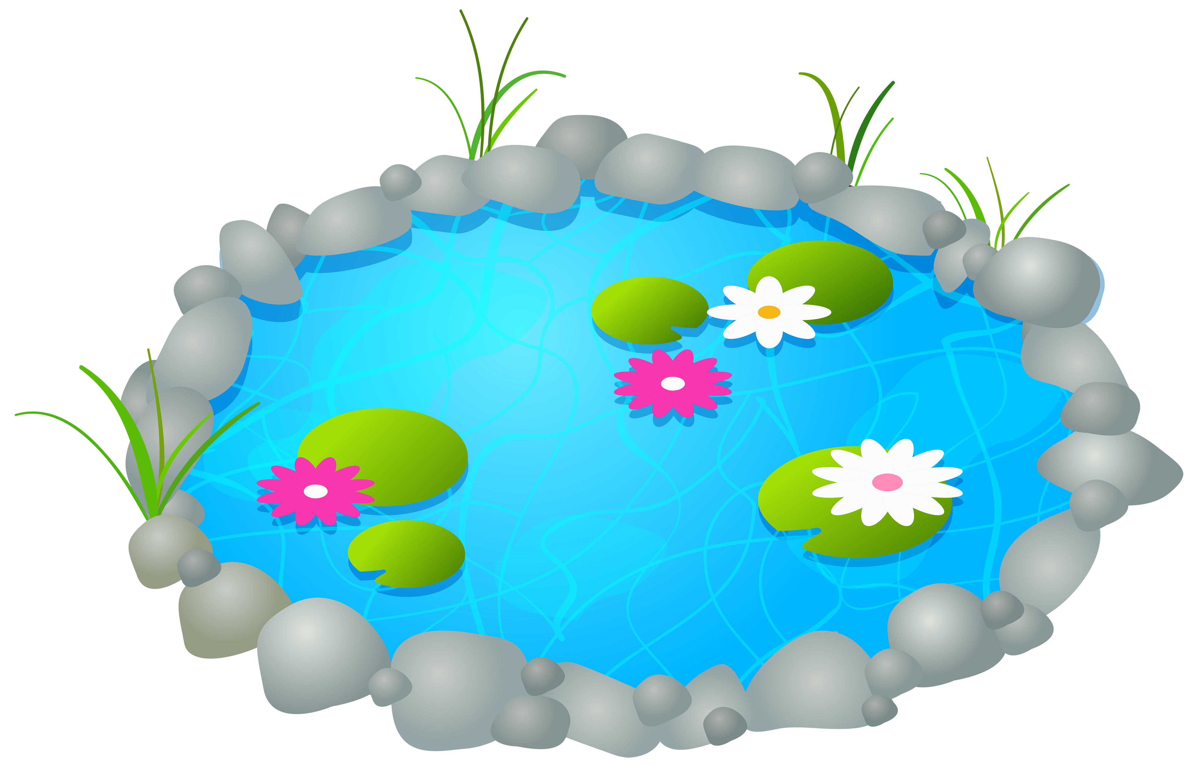Pond clipart