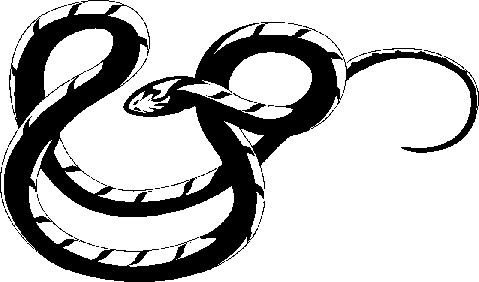Snake  black and white reptiles clip art