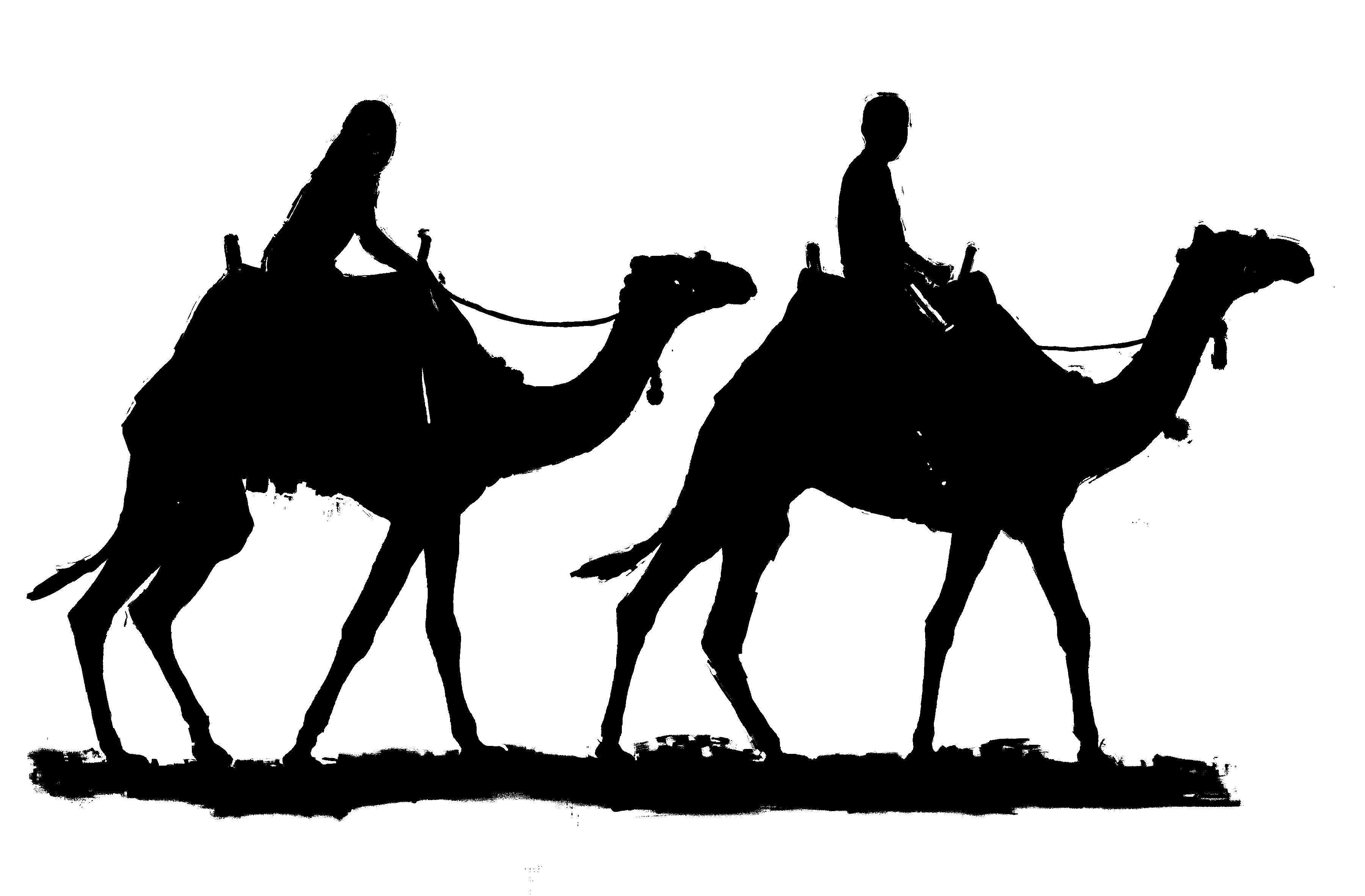 Camel clip art hostted