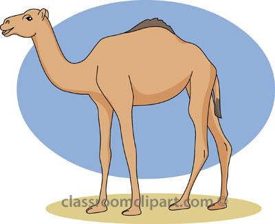 Camel clipart camel 2