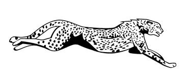 Cheetah clip art download 2