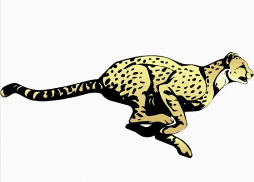 Cheetah clipart 2