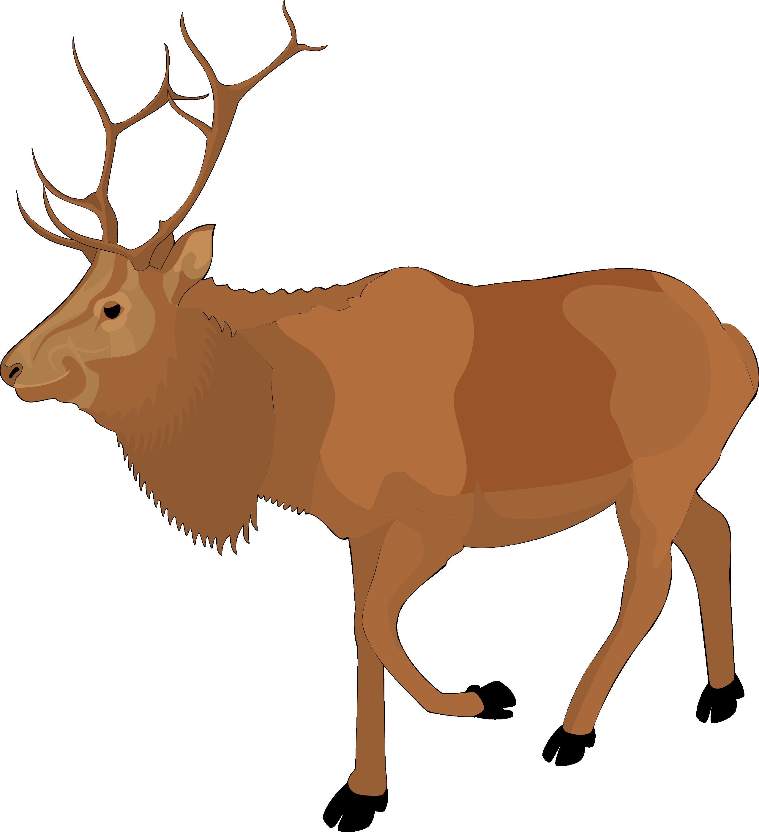 Clip art reindeer clipart
