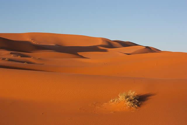 Desert clipart 3