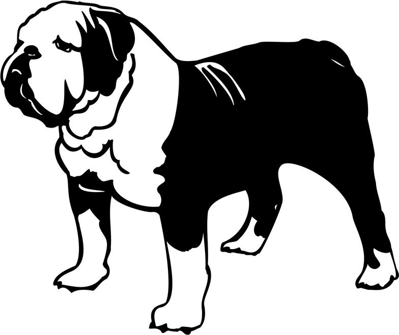 Free bulldog clipart pictures 9