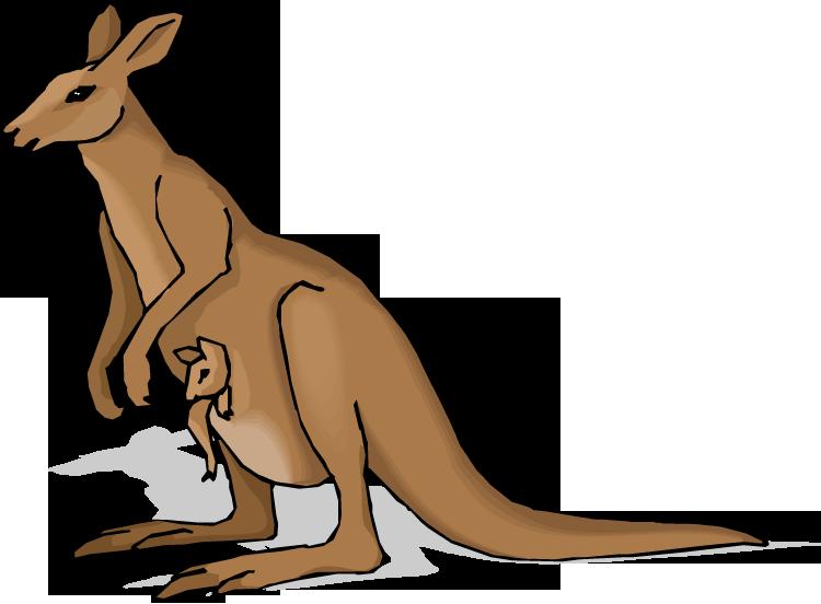 Free kangaroo clipart 2
