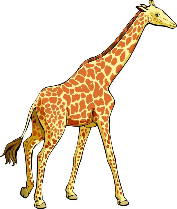 Giraffe clip art free clipart images 2