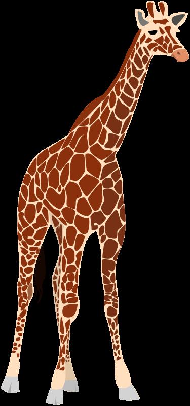 Giraffe clip art free clipartfest