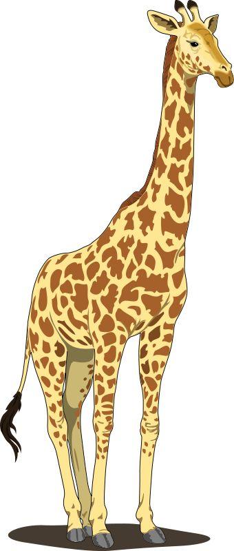 Giraffe clipart free clipartfox