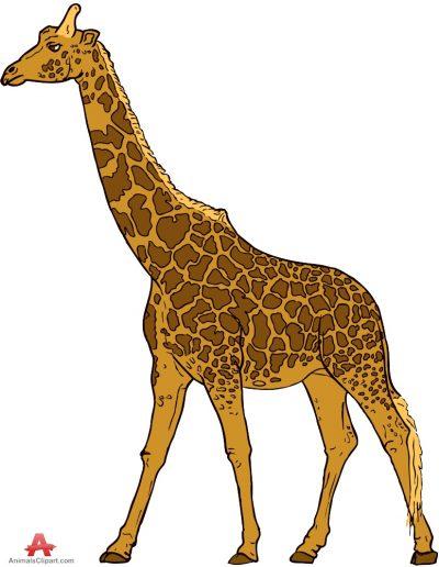 Giraffe image clipart clipartfox