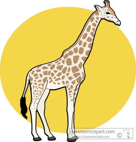 Image of baby giraffe clipart 7 clip art