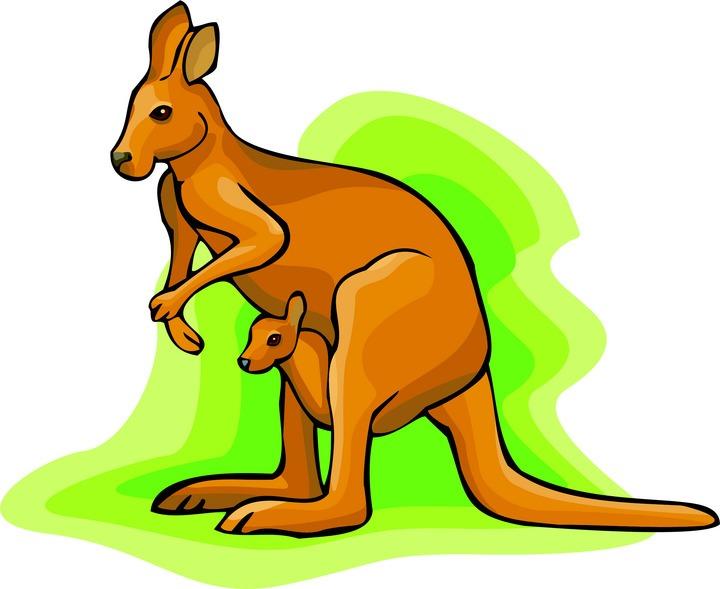 Jumping kangaroo clipart free images