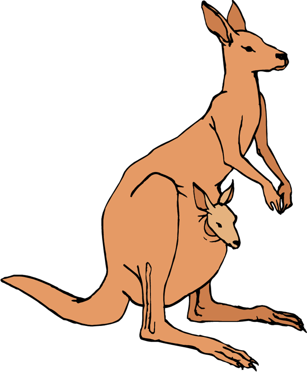 Kangaroo clip art free clipart images