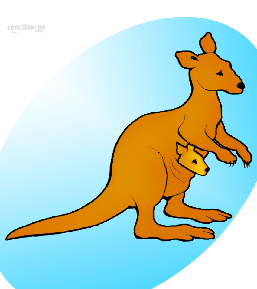 Kangaroo clip art id clipart pictures