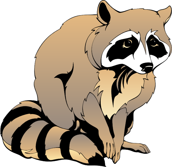 Raccoon clip art pictures free clipart images