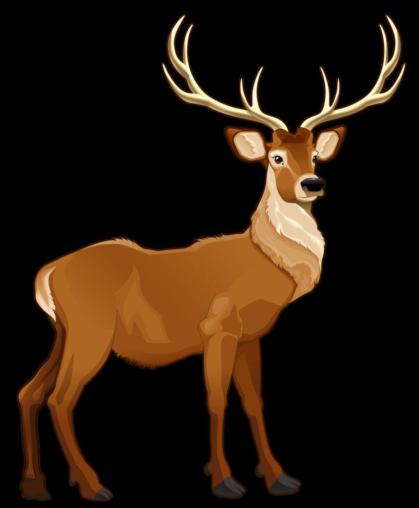 Reindeer clipart 2