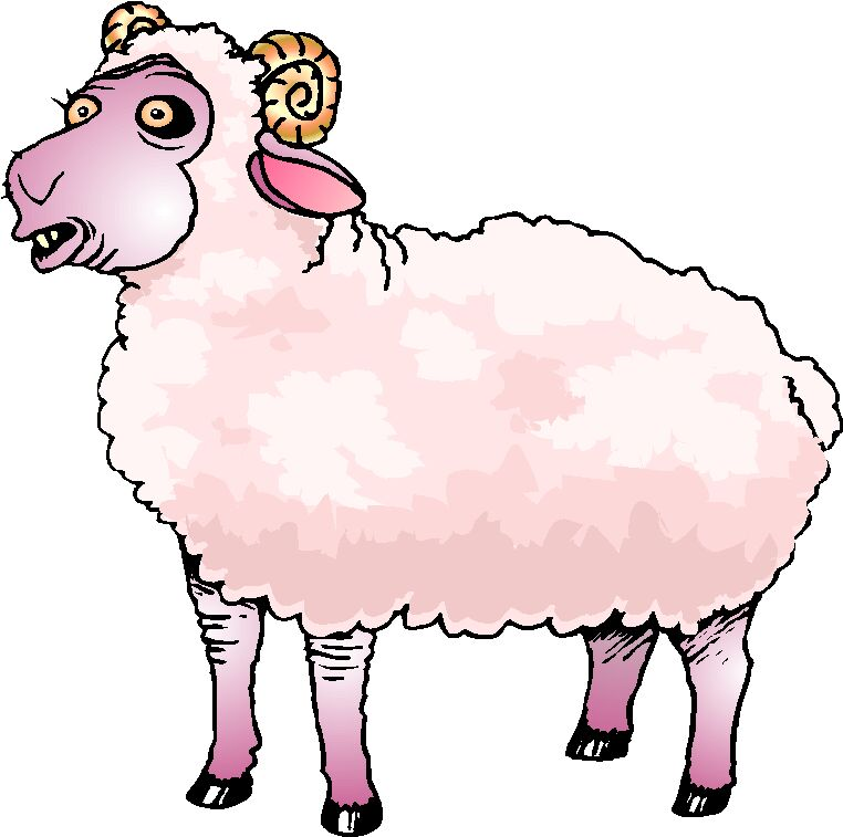 Sheep clipart 6