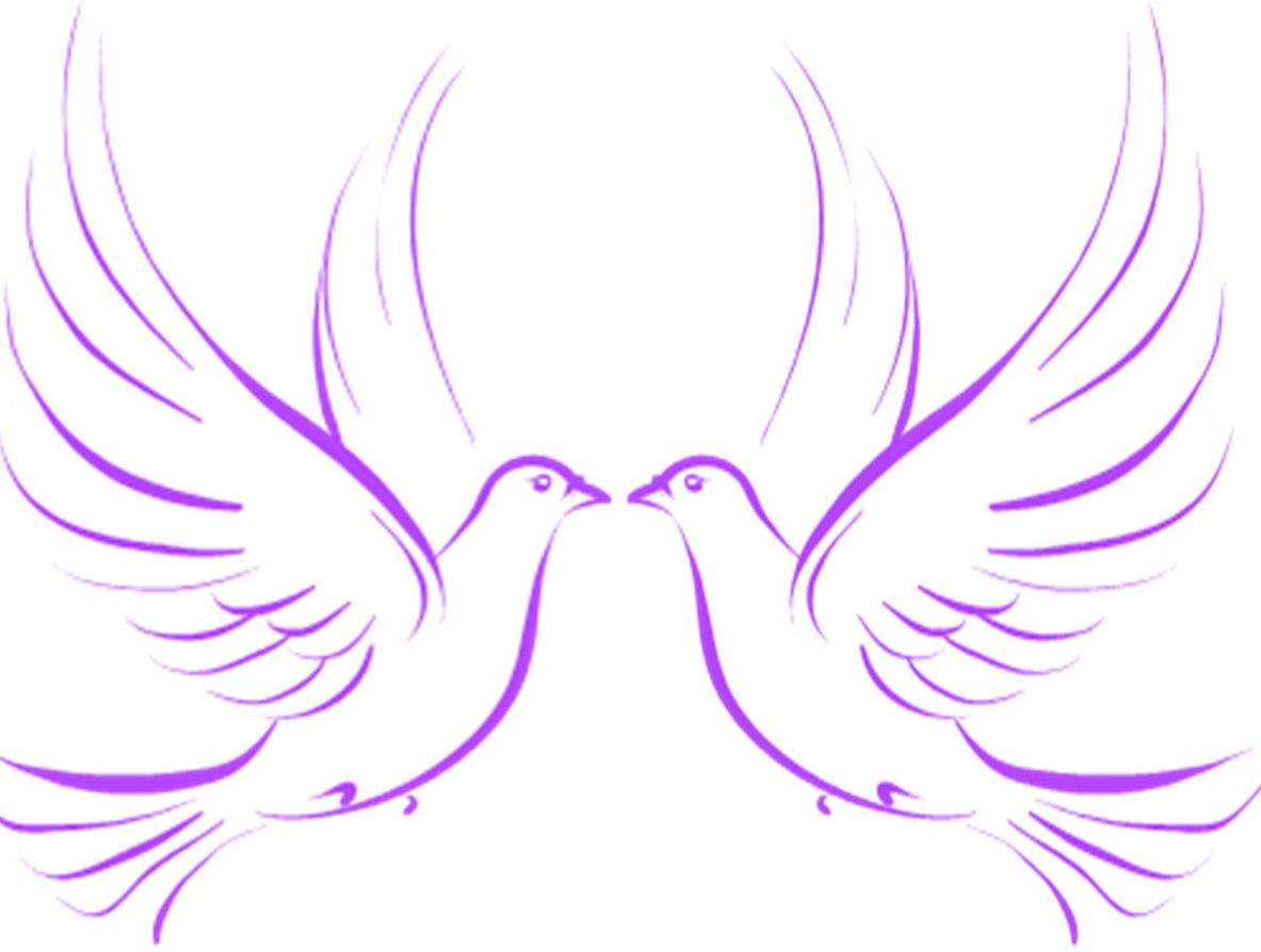 White dove free clipart 2