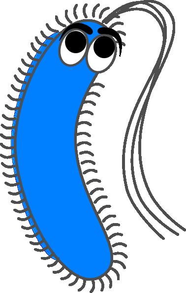 Bacteria blue funny clip art at vector clip art