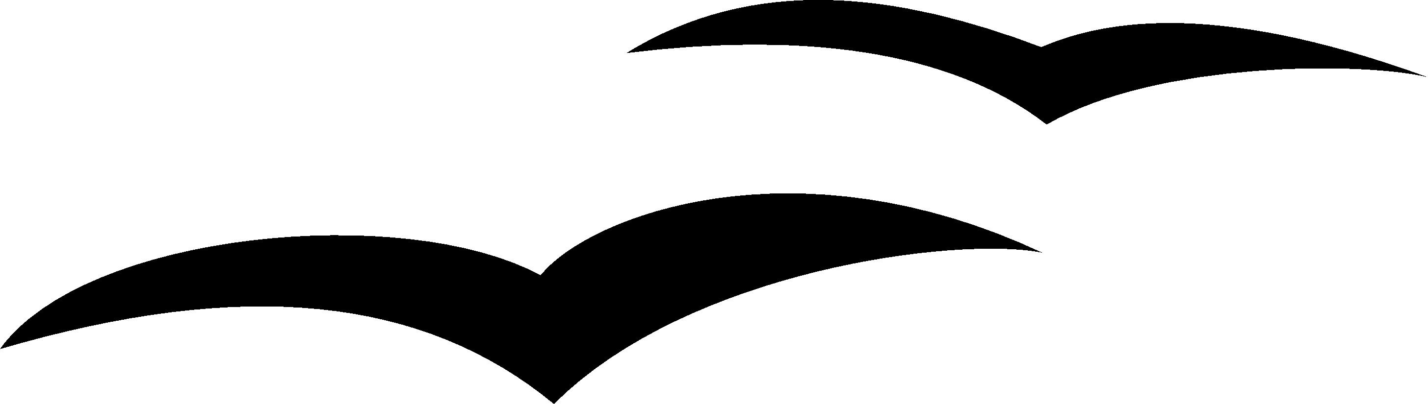 Black seagull clipart no background clipartfest