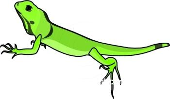 Clip art iguana clipart