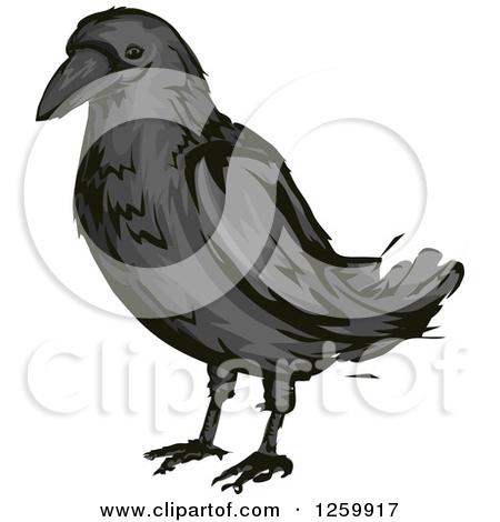 Crow clip art crow clipart fans 14