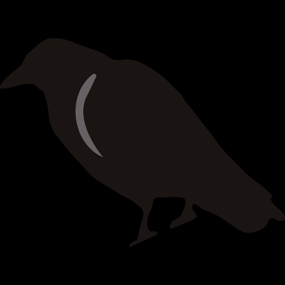 Crow clipart birds and clip art photo crowclipart