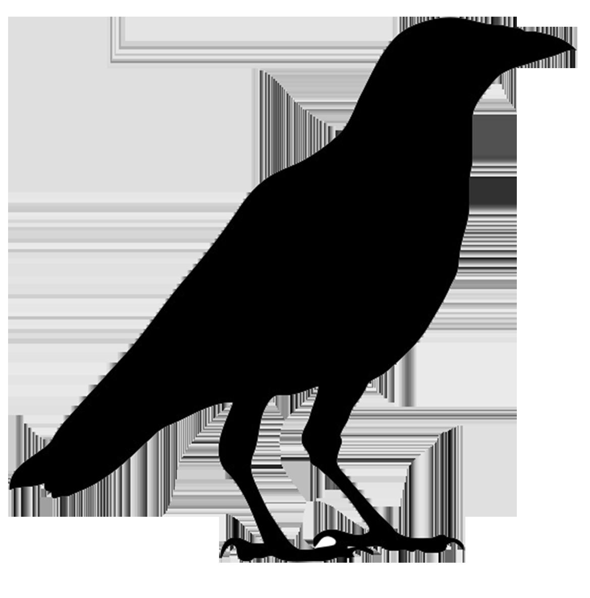 Crow clipart clipartfox