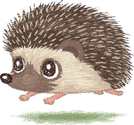 Cute hedgehog clipart clipartfest