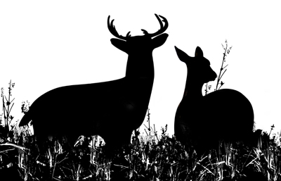 Deer hunting clip art clipart free download