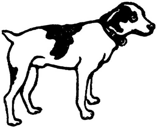 Dog  black and white black and white picture of a dog free download clip art