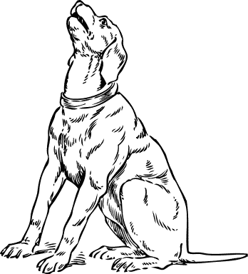 Dog  black and white dog black and white clip art clipart photo 3