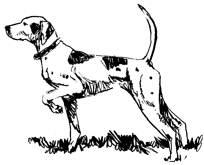 Dog  black and white dog black and white clip art clipart photo 5