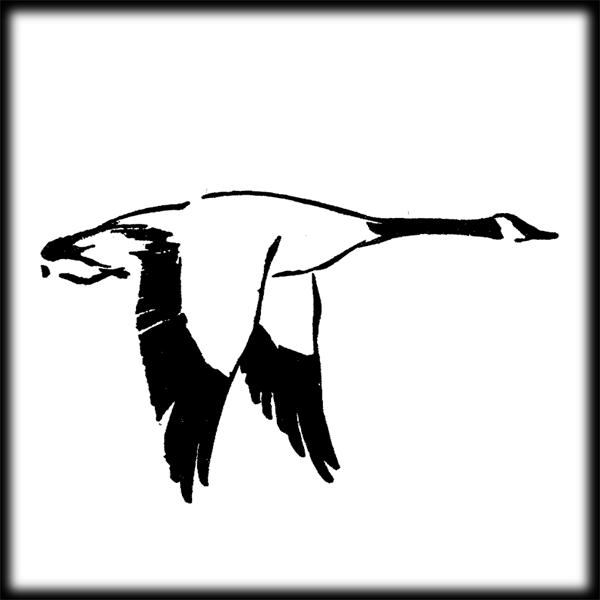 Duck hunting clipart tumundografico 3