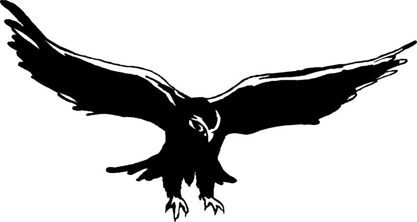 Falcon clip art images free clipart