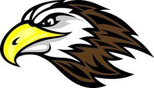 Falcon clip art tumundografico
