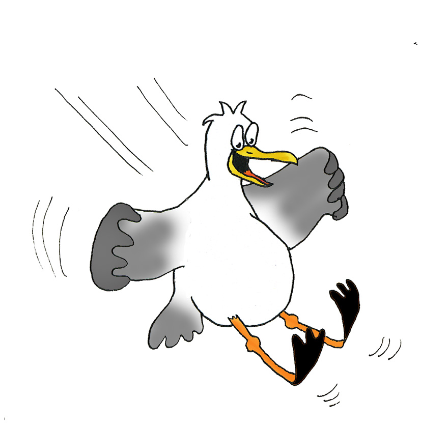 Free clip art seagull cartoon clipartfest 2