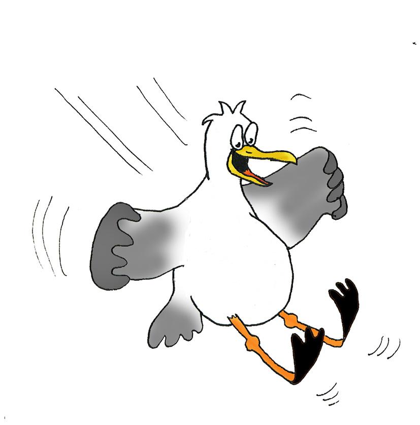 Free clip art seagull cartoon clipartfest 2